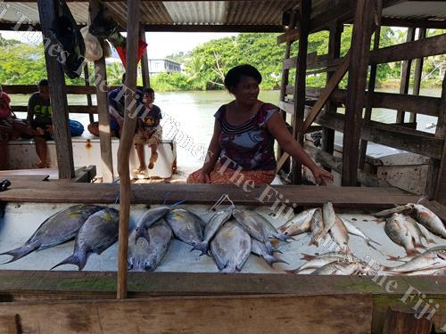 Members of a youth club from Macuata sell fish at the Labasa Market. While working with martime communities, an academic has found women to be the backbone of the success of the projects. Picture SUPPLIED