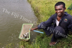 Kuna Singh a student of Monfort Boys Town holds a pocket net with fish at their fish pond in Veisari. Picture ATU RASEA